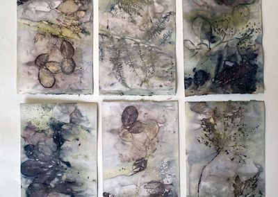 Ruth Thomas, Eco Dyeing